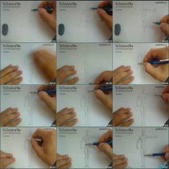 آموزش طراحی فیگور و طراحی بدن انسان برای هنرمندان