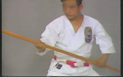مجموعه بینظیر آموزش کاراته مبتدی تا حرفه ای