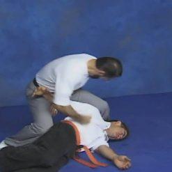 هنر رزمی - آموزش سیلات