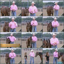 آموزش سوارکاری و تربیت اسب