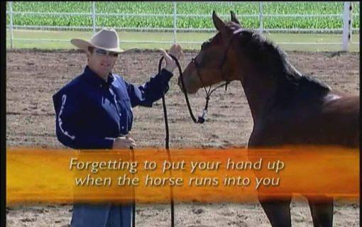 بدست آوردن احترام اسب و کنترل اسب روی زمین