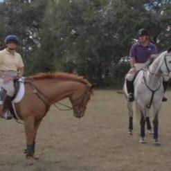 آموزش اسب دوانی