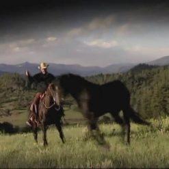 آموزش مطیع کردن اسب از پت پارلی