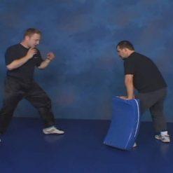 آموزش سانشو مبارزاتی - دوره حرفه ای