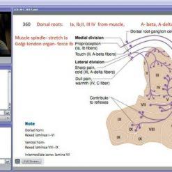 فیلم های آموزش پزشکی کاپلان - های ییلد 2012