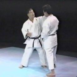 آموزش تکنیک های گوژو ریو