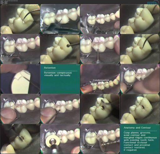 دندانپزشکی دانشگاه میشیگان