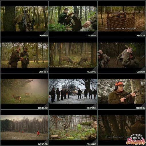 آموزش شکار انواع حیوانات - مستند های آموزشی شکار