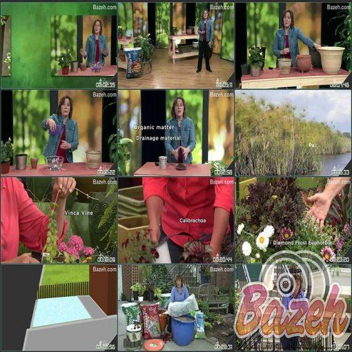 باغبانی در گلدان - پرورش و کاشت گیاهان