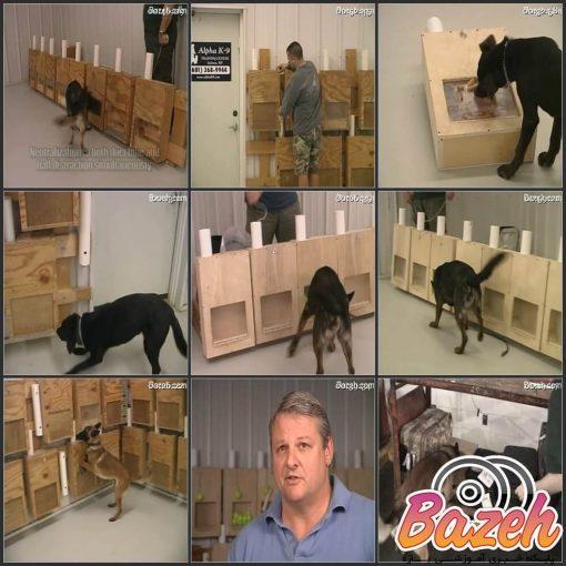 آموزش سگ تشخیص مواد