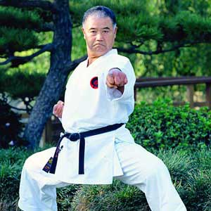 آموزش سبک گوجوریو کاراته